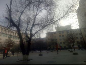 新疆医科大学中医学院