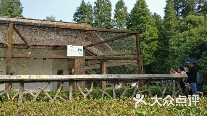 南昌新动物园图片 - 第15张