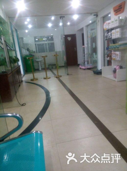 宁波一心动物医院-图片-宁波宠物-大众点评网