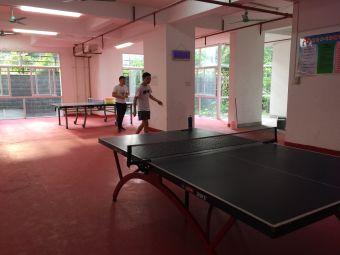 峰玲乒乓球教育(碧雅苑校区)