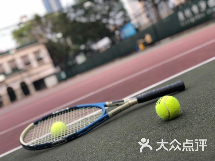 广州市沙面网球场体育-第50张图片舞蹈教学的基本要求是图片