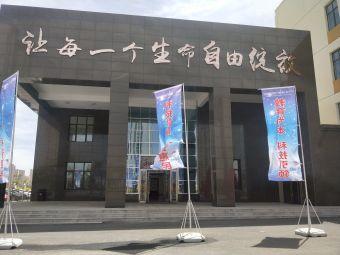 山西大同大学附属小学(御河九号校区)