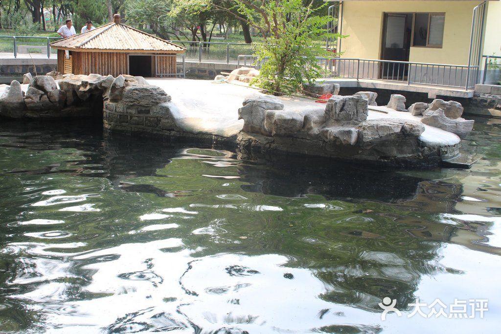 济南动物园图片 - 第831张