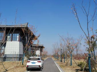 江苏省泗阳县成子湖旅游度假区综合服务中心停车场