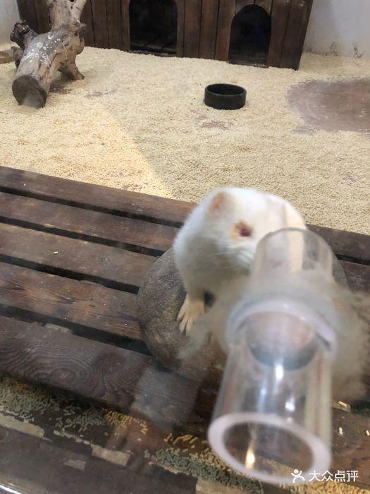 天津zoonly动物主题公园图片 - 第7张