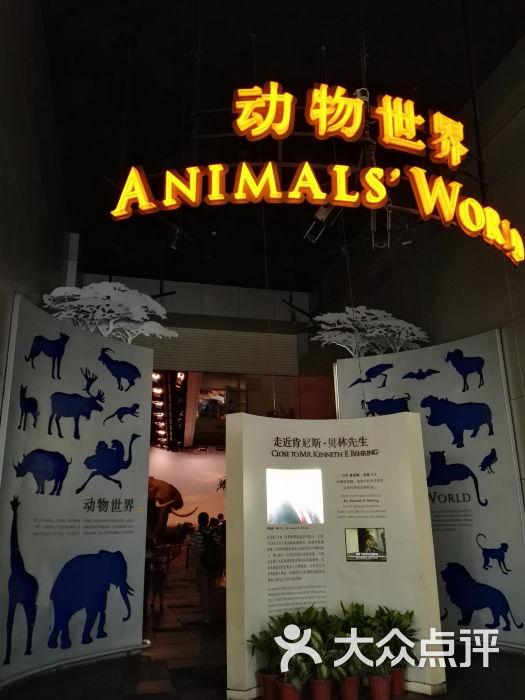 上海科技馆-动物世界图片-上海周边游-大众点评网