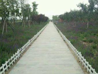 环秀湖生态园