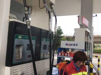 中石化埃索加油站(环岛东路店)