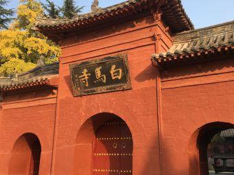 白马寺-游客服务中心