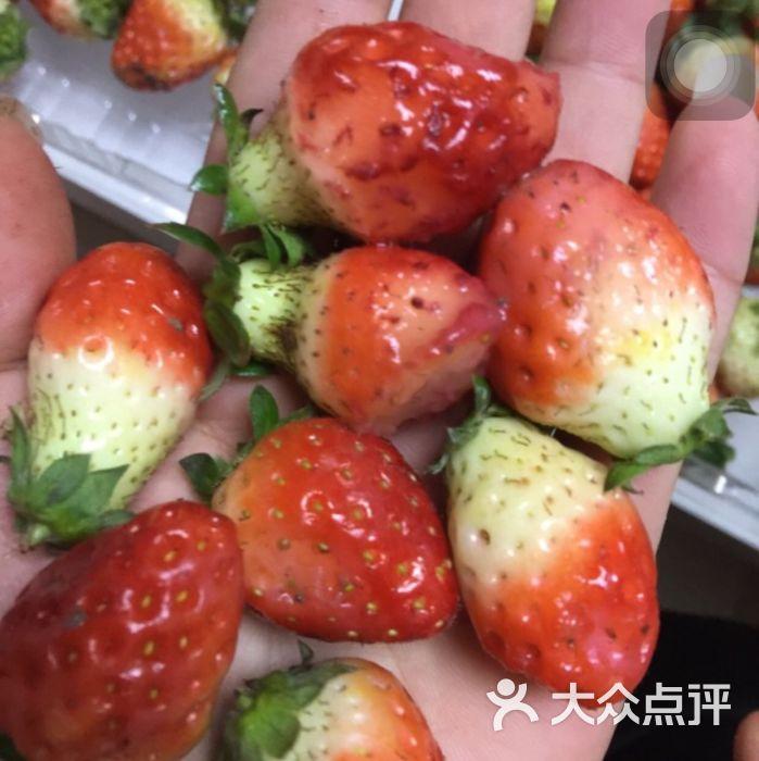 草莓果实的组成结构图