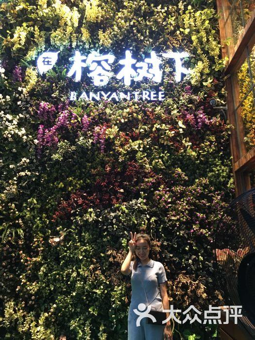 在榕树下花艺餐厅(车公庙店)的全部评价(第7页)-深圳