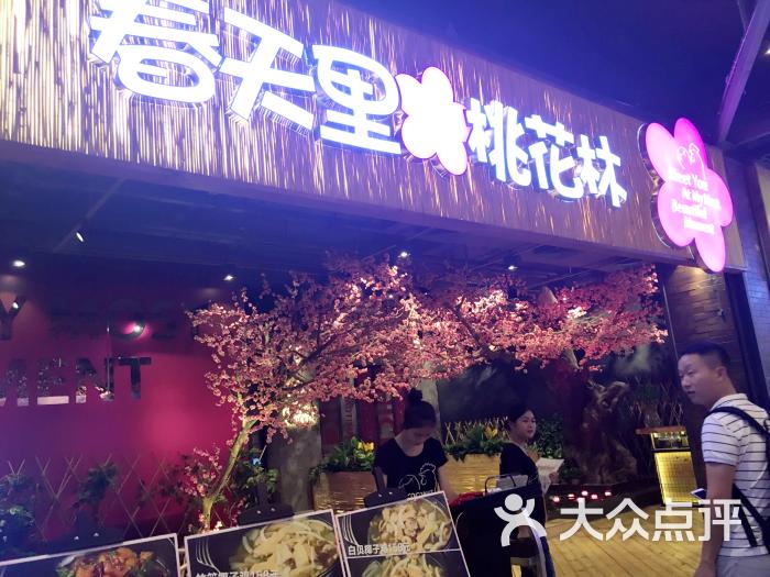 春天里的桃花林(兴盛路店)-图片-广州美食-大众点评
