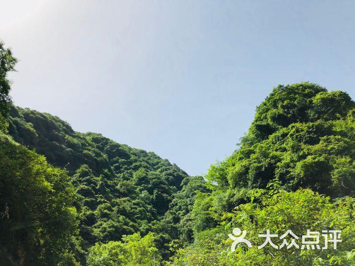 祥峪森林公园-图片-西安周边游-大众点评网