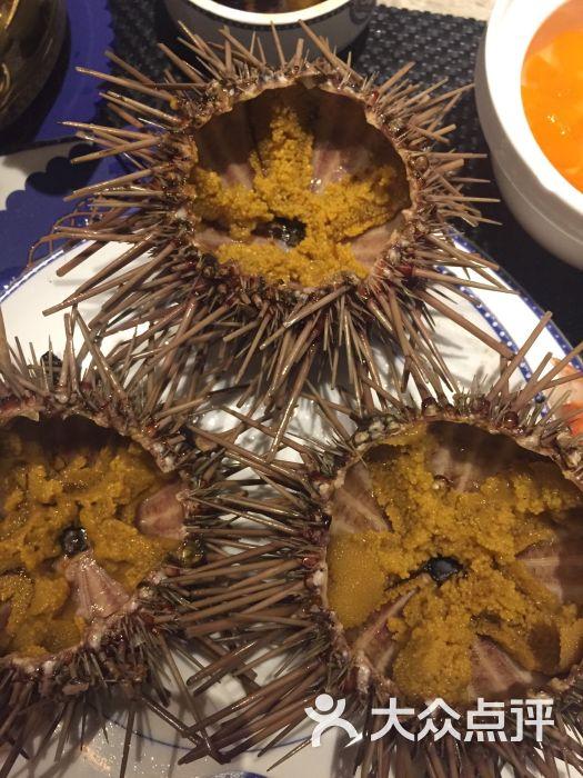 海鼎荟海鲜姿造-海胆图片-厦门美食-大众点评网