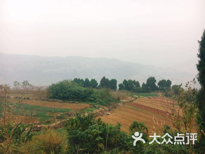 云顶山风景区-图片-金堂县周边游-大众点评网