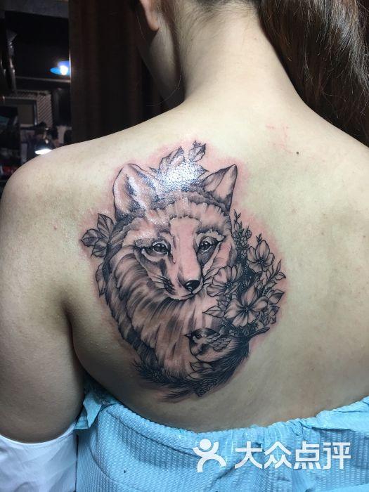 越域刺青(中国刺青名店)-动物-纹身秀-动物图片-上海