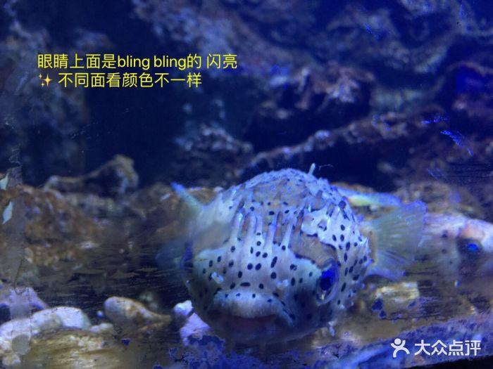 嗒咪动物奇幻乐园(杭州店)图片 - 第123张