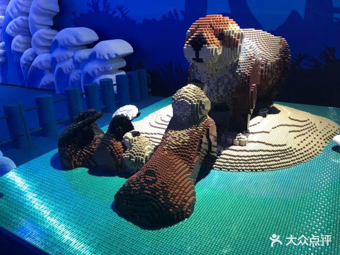 乐高动物王国环保展鸟巢站图片 - 第194张