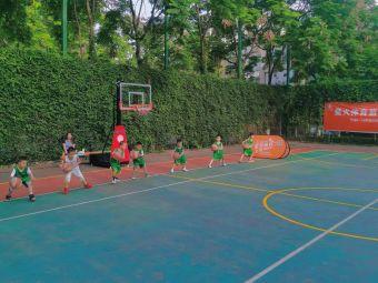 星火体育篮球训练营(森林公园店)
