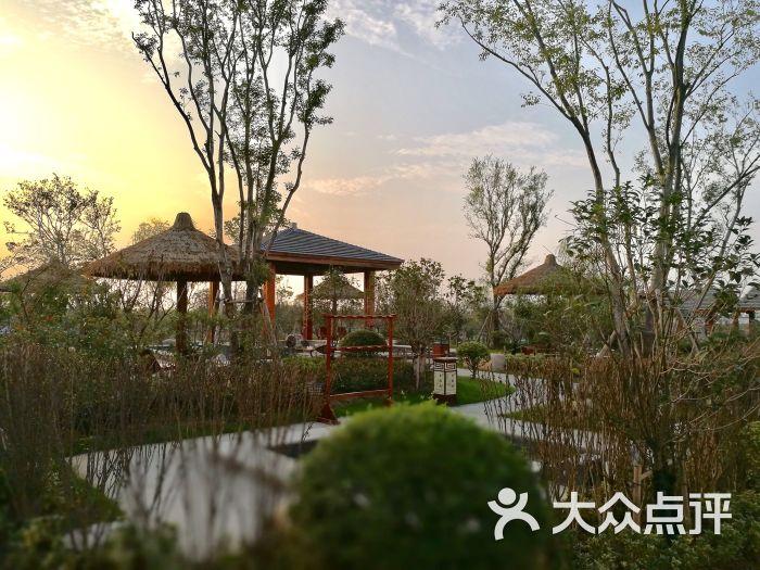 龙山温泉度假中心-景点图片-贾汪区周边游-大众点评网