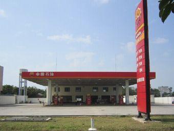 中国石油顺丰加油站(庙山社区东南)