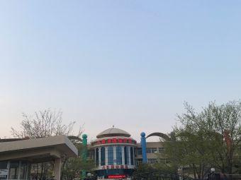 八音河国际幼稚园