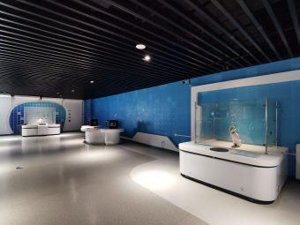咸阳市市民文化中心