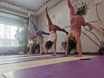 禅尚缘瑜伽美容养生会馆
