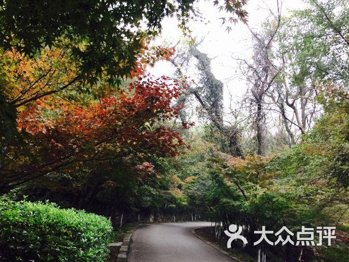 栖霞山名胜风景区图片 - 第4872张