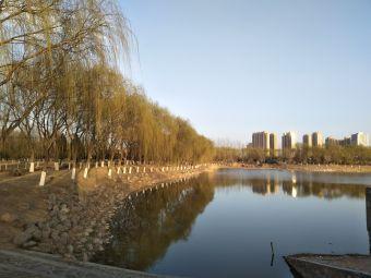 宁夏大学(贺兰山校区)