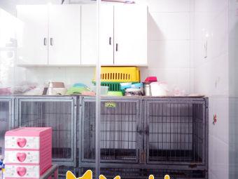 No.11宠物生活馆