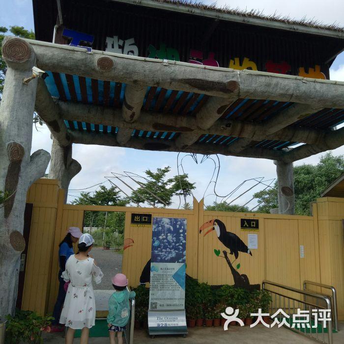 海口天鹅湖动物基地图片-北京动物园-大众点评网