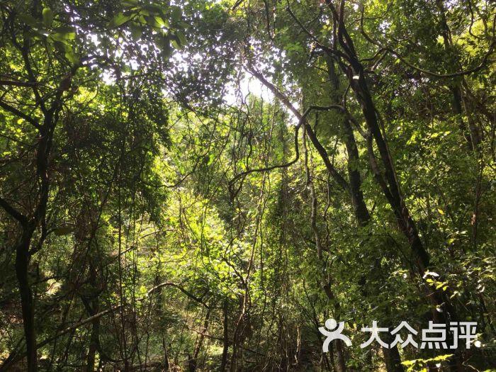 昆明青龙峡风景区图片 - 第12张