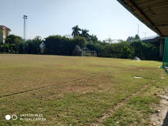 VIP足球场