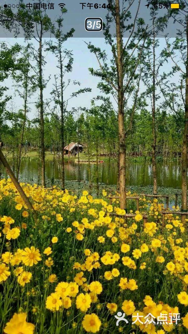长兴岛郊野公园图片 - 第7张