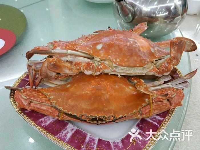 镇宏大美食-v美食梭子蟹图片-连云港酒店-万象点大众汇吉野美食家铁西图片