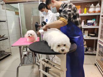雷宝精致宠物美容工作室