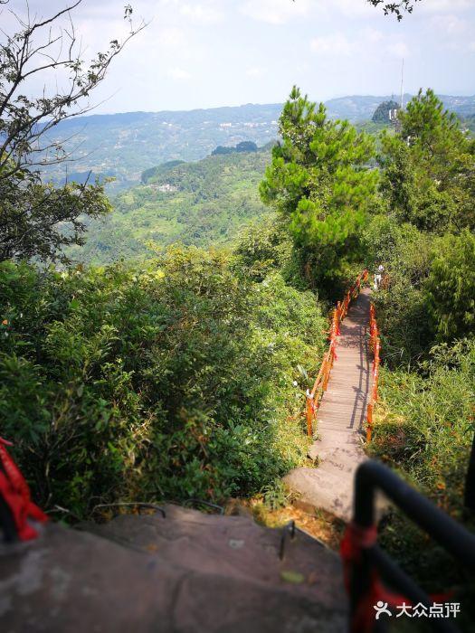 圣灯山国家森林公园图片 - 第26张