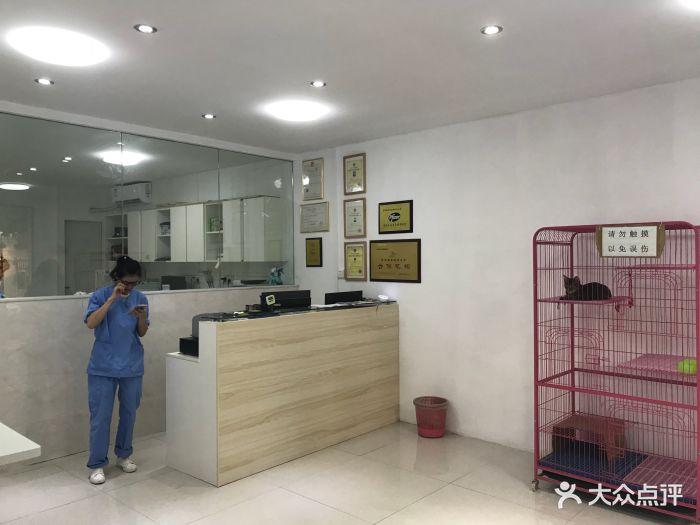 宠颐生动物医院(文康分院)图片 - 第3张