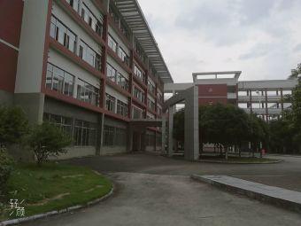 临桂区第三中学