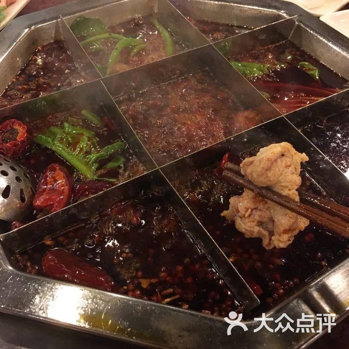 沧龙火锅-图片-重庆美食-大众点评网