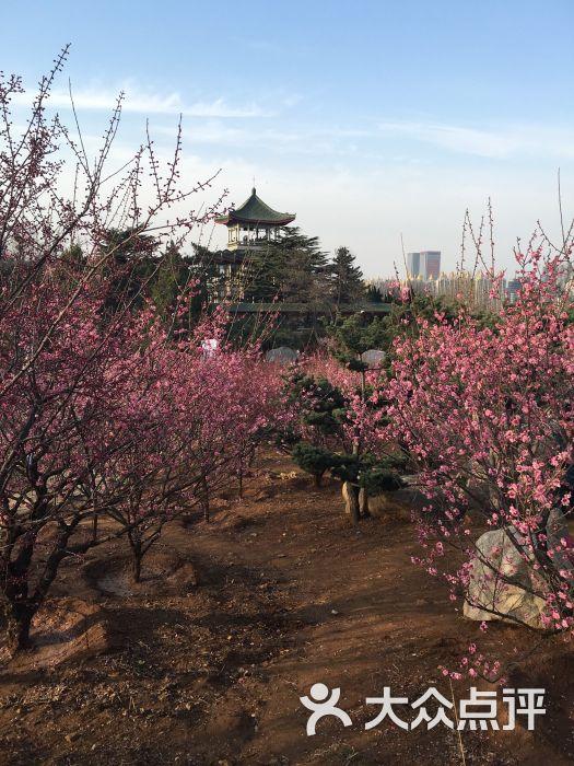 南山公园动物园-图片-烟台周边游-大众点评网