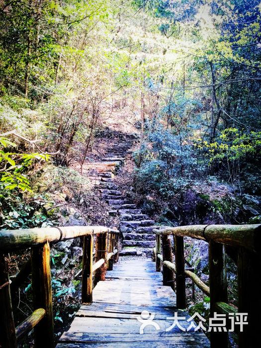 野鹤湫风景区图片 - 第66张