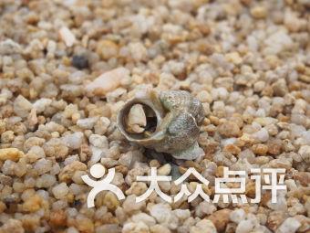 蝴蝶湾泳滩
