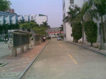 晋江紫峰中学