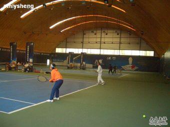 网动天地网球俱乐部