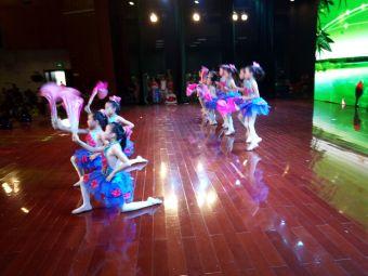 单县陆军舞蹈
