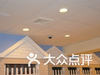 蓝山宠物酒店