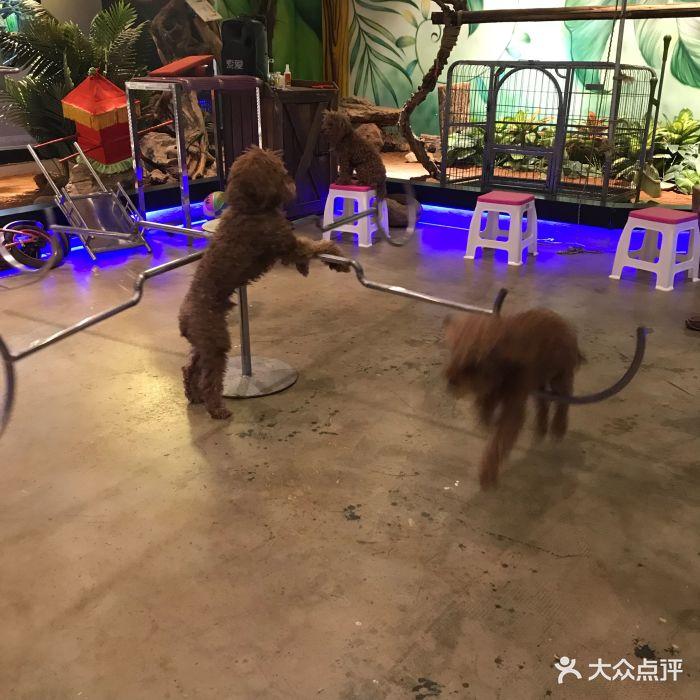 天津zoonly动物主题公园图片 - 第58张