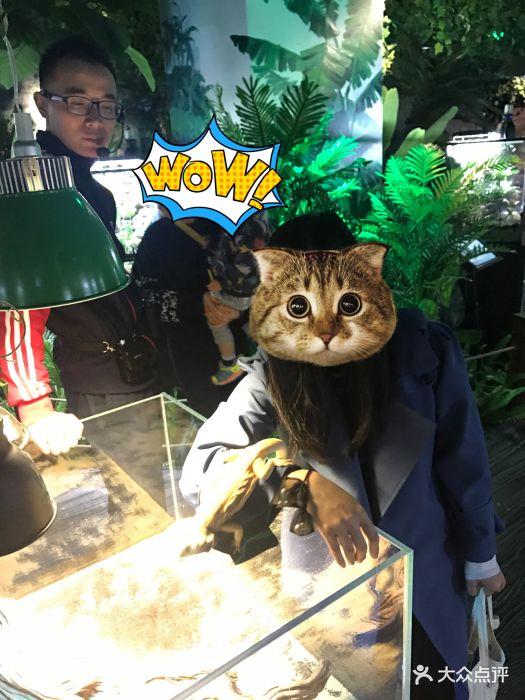 嗒咪动物奇幻乐园(杭州店)图片 - 第1张